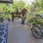furnished outdoor wolf deck
