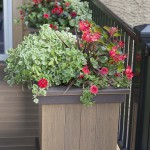 azek deck flower box