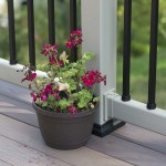 close up of flowers in wood planter on deck railing